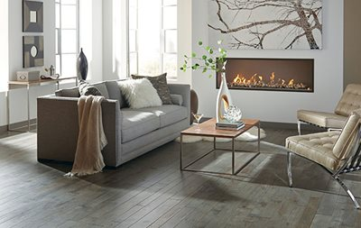 cozy living room with hardwood flooring